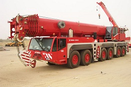 Crane Fleet for Rental